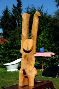 2006 Erregter Affe...