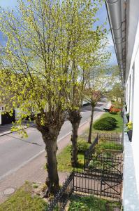Blick aus dem Fenster: Straßenseite